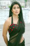 Shriya Saran (32)