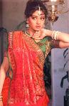 Sri Devi in Saree
