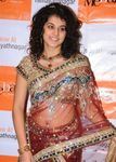 Taapsee Pannu photo (11)