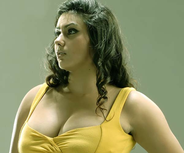 Namitha says no to Bollywood and glamour
