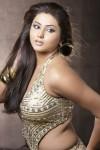 Busty Namitha (4)