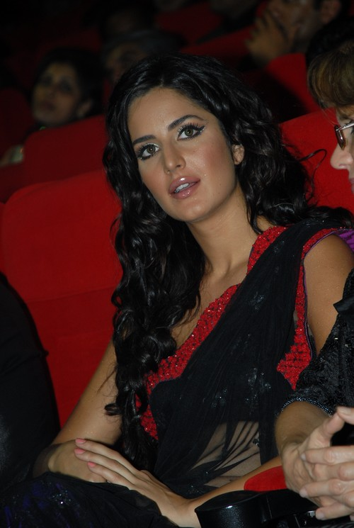 Katrina_Kaif_2009-Google-Zeitgeist-Most-popular-celebrities.JPG