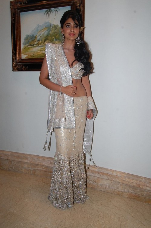 Shriya-Saran-at-the-Chennai-International-Fashion-Week-1.jpg