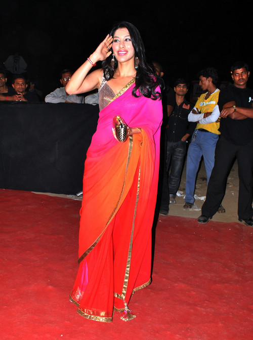 Sophie-Chaudhary-at-Star-Screen-Awards-2009-held-on-09th-Jan-2010-at-MMRDA-Ground-Bandra.jpg