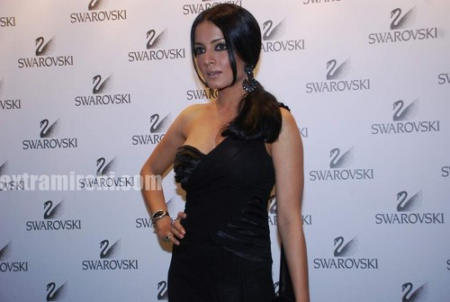 Celina-jaitley-at-Swarovski-auction-dinner-1.jpg